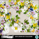 Florju_pv_explosiondecouleur_cluster3_small