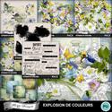 Florju_pv_explosiondecouleur_bundle_small