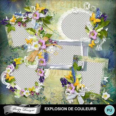 Florju_pv_explosiondecouleur_cluster1