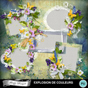 Florju_pv_explosiondecouleur_cluster1_small