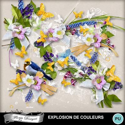 Florju_pv_explosiondecouleur_cluster2