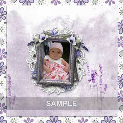 Bds_lavenderfields_pv_qp1