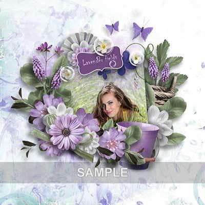 Bds_lavenderfields_pv04