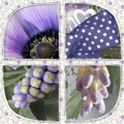 Bds_lavenderfields_zoom