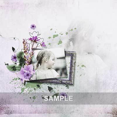 Bds_lavenderfields_pv03