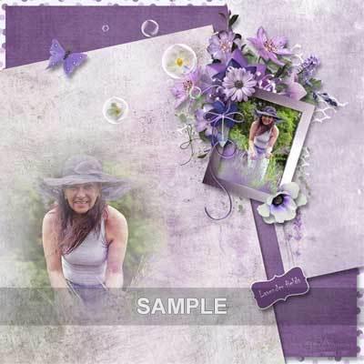 Bds_lavenderfields_pv02