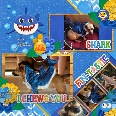 11clevermonkeygraphics-little-baby-shark-tammywood