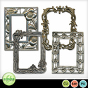 Fancy_frames_1_small