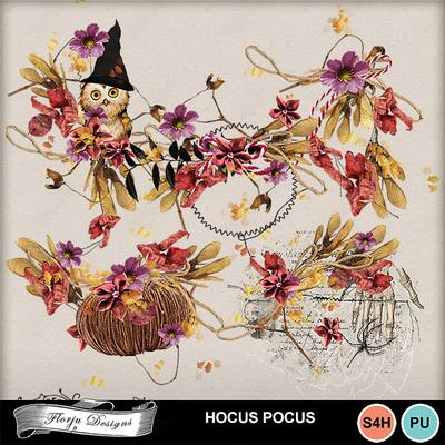 Pv_hocuspocus_emb12florju