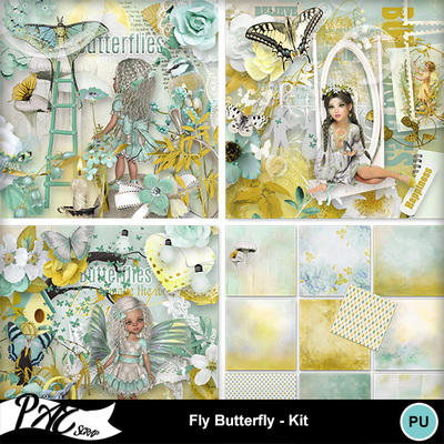 Patsscrap_fly_butterfly_pv_kit