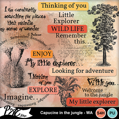 Patsscrap_capucine_in_the_jungle_pv_wa