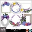 Aimeeh_fieldsoflavender_frames_small