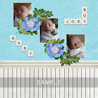 Baby_joey