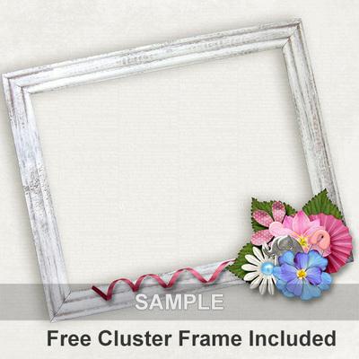 Cluster_frame