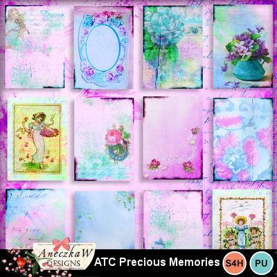 Precious_memories