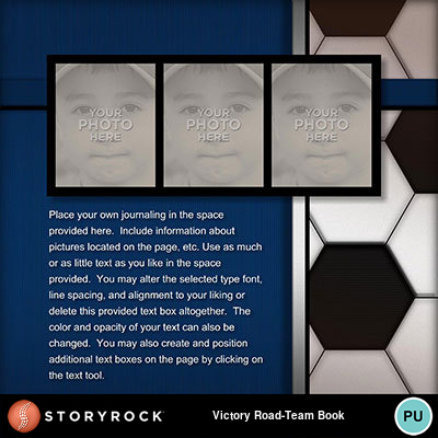 Victory-road-team-book-04