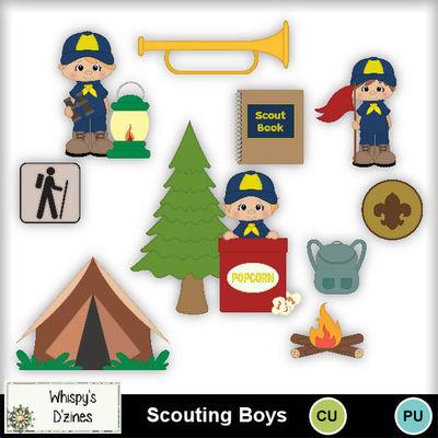 Wdcuscoutingboyscapv