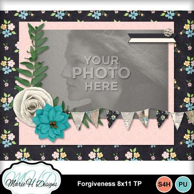 Forgiveness_8x11_tp_04