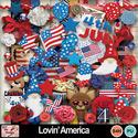 Lovin__america_preview_small