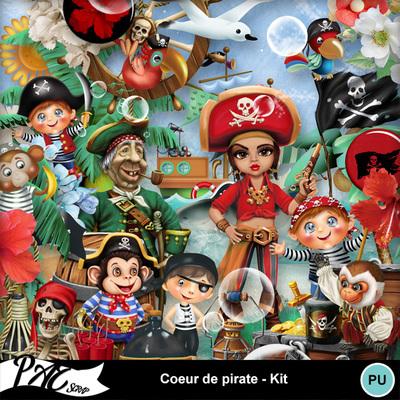 Patsscrap_coeur_de_pirate_pv_kit