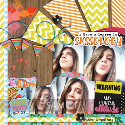 9clevermonkeygraphics-sassitude-amanda1