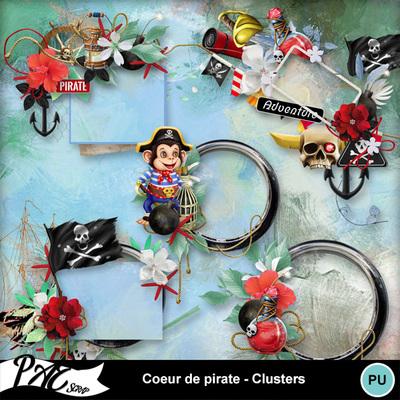Patsscrap_coeur_de_pirate_pv_clusters