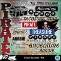 Patsscrap_coeur_de_pirate_pv_wa_small