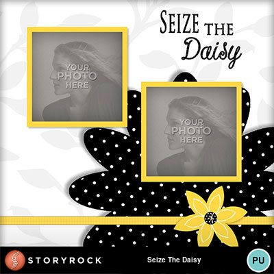 Seize-the-daisy-004