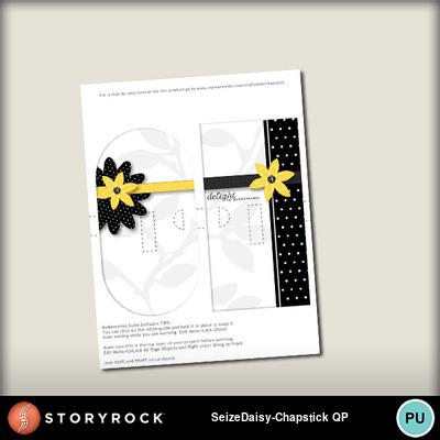 Seize-the-daisy-chapstick-qp