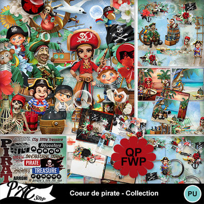 Patsscrap_coeur_de_pirate_pv_collection