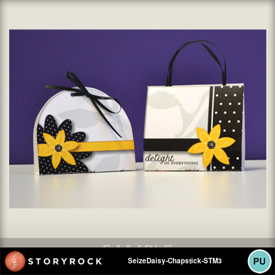 Seize-the-daisy-chapstick-sample2