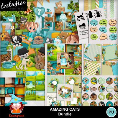 Kasta_amazingcats_bundleexclu_pv
