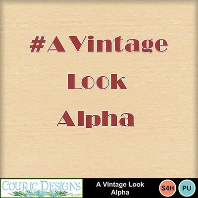 A-vintage-look-kit-7