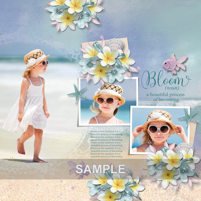 Patsscrap_beach_sea_sun_sample4