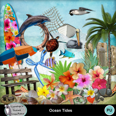 Csc_ocean_tides_wi_1