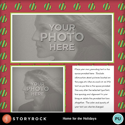 Home-for-the-holidays-006