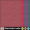 Determination_leather_preview_small