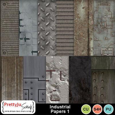 Industrial_pp1