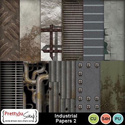 Industrial_pp2