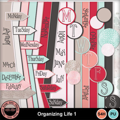 Projectlife__6_