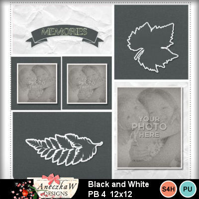 Black_and_white_pb4-001