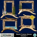 Beach_frames_deluxe_volume_1-01_small