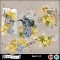 Florju_pv_enjoyit_cluster2_small