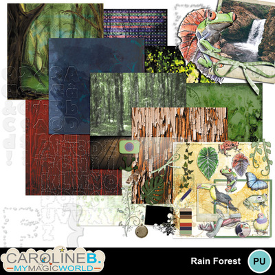 Rainforest_coll