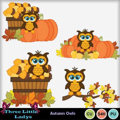 Autumn_owls_1-tll