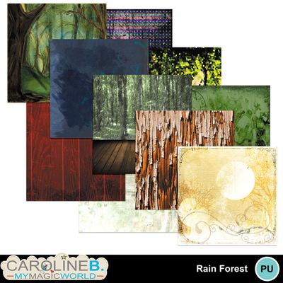 Rainforest_pp1