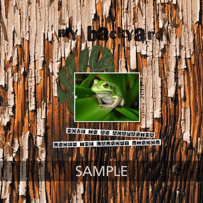 2014-october-my-backyard600_copy