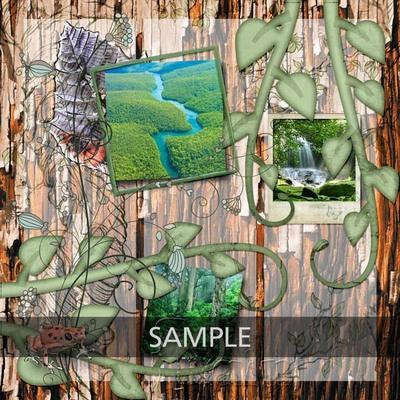 Cab_rainforest_collection_lo01_copy