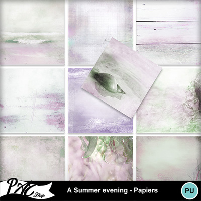 Patsscrap_a_summer_evening_pv_papiers