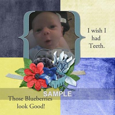 Bw_berryblue_lo1sample